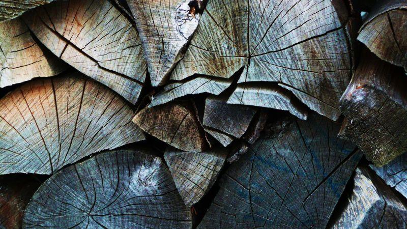 一堆劈砍过的木头