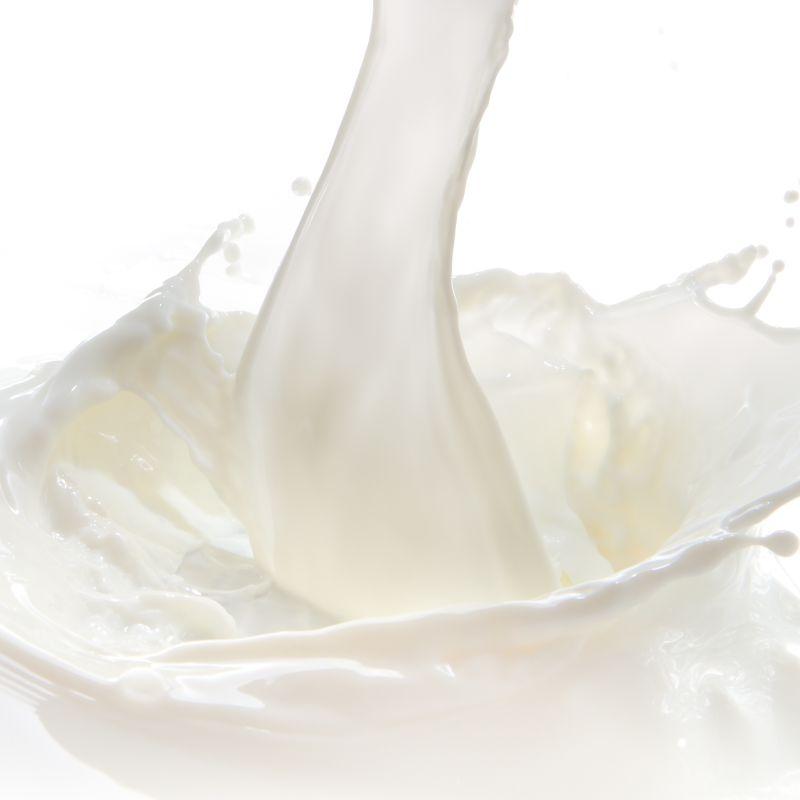 白色背景中倾倒的牛奶