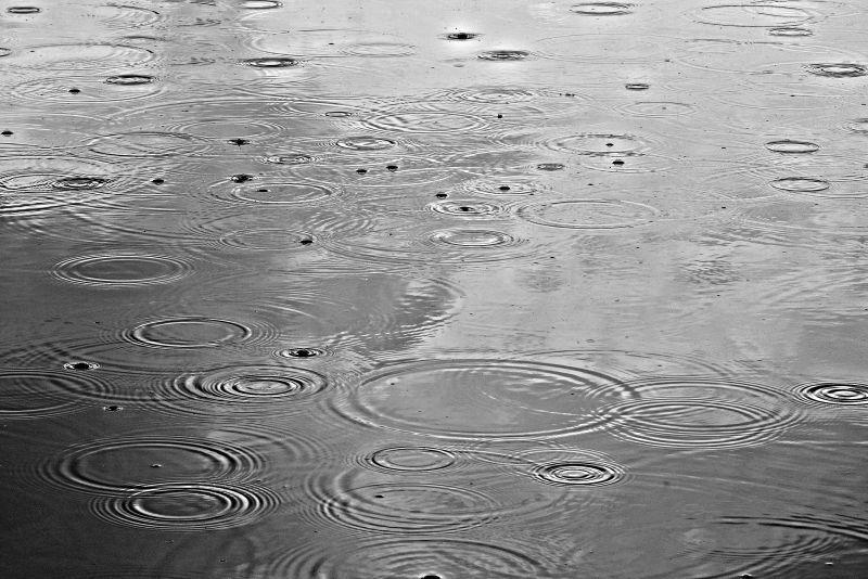 雨中的波纹
