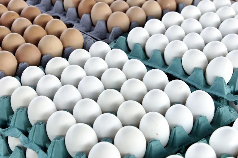 整排的鸭蛋