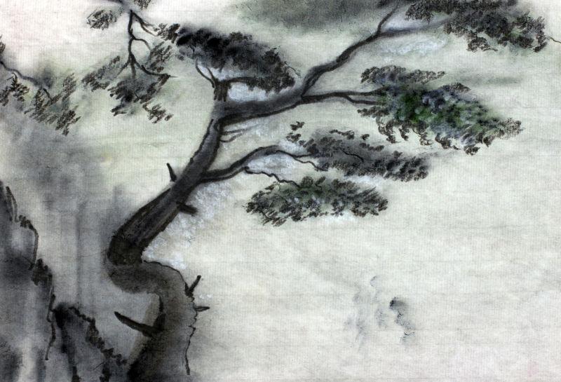 高山云雾中的松树