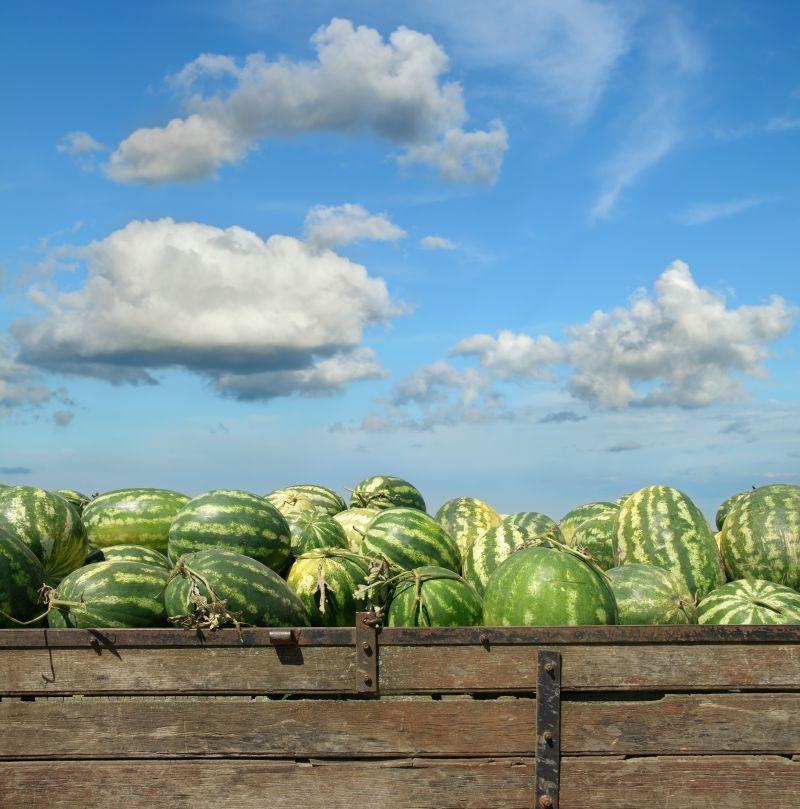 蓝天下农贸市场的西瓜