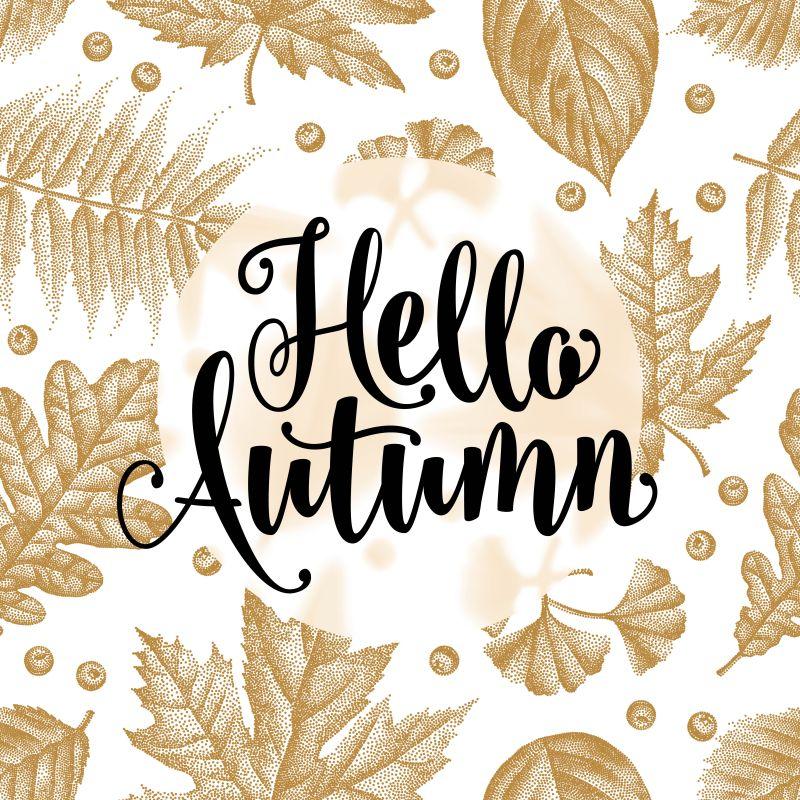 秋天主题的矢量落叶背景