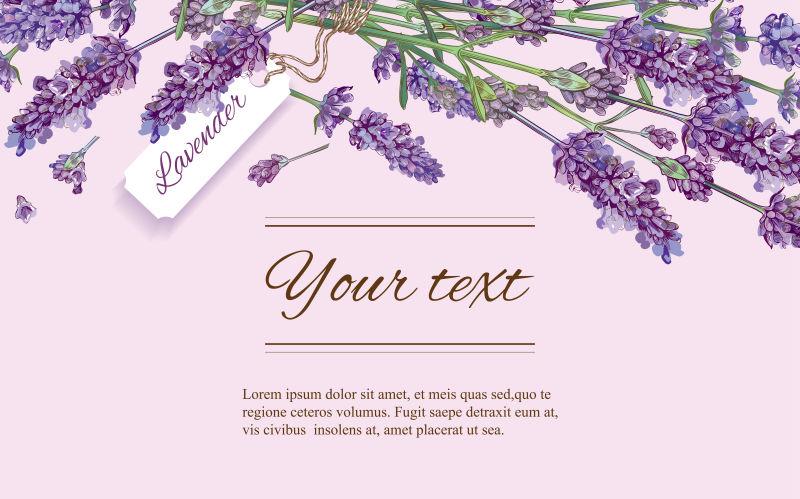 创意矢量紫色薰衣草元素的横幅设计
