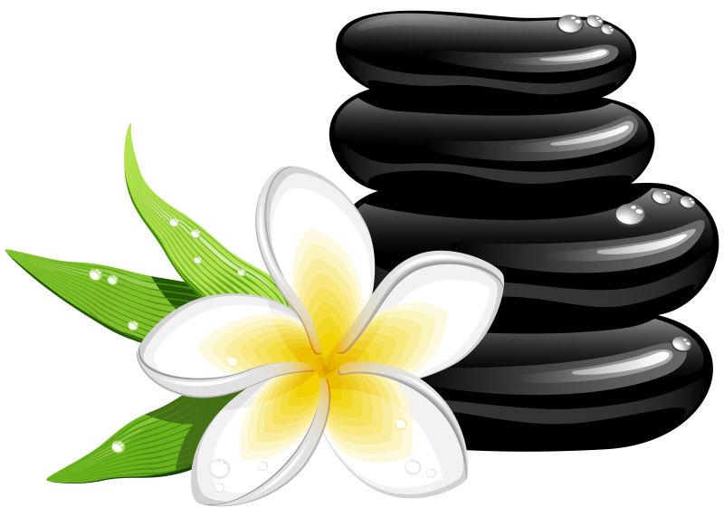 石头与花朵
