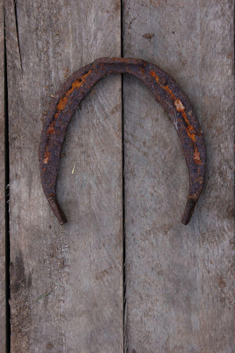 木板上的金属蹄铁