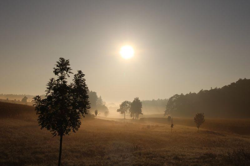 日出时的自然风光