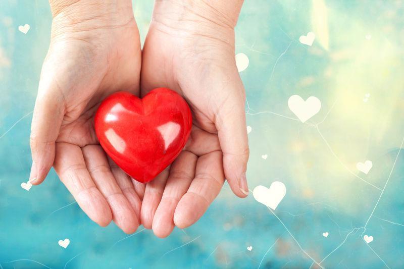 双手捧着一颗红色的心