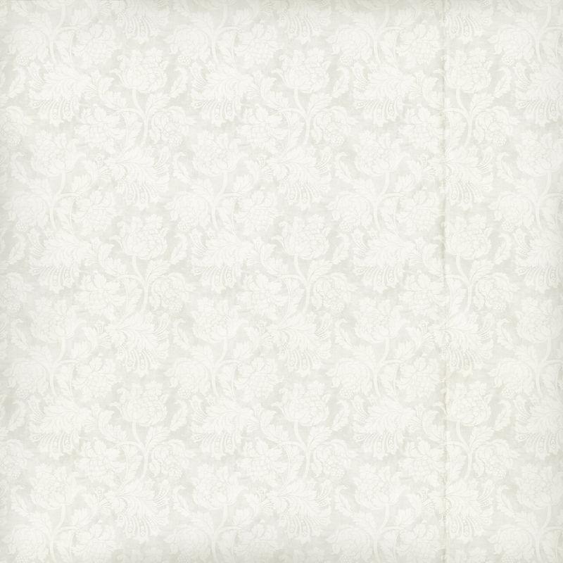 白色花朵背景的壁纸