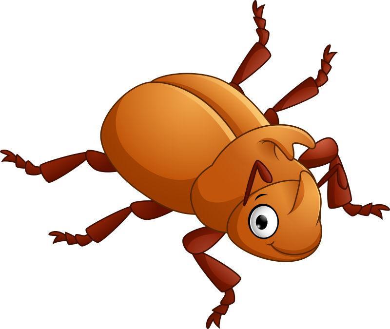 创意矢量卡通尖角甲虫插图