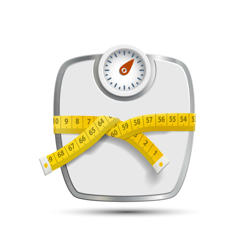 矢量的体重秤和测量尺