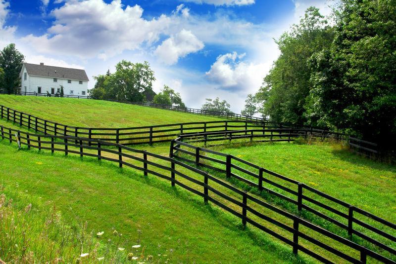 绿色田野和农舍