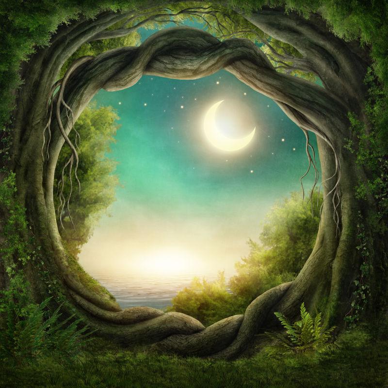 月光下的迷人森林