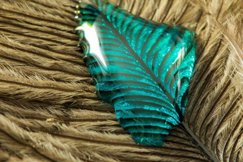 绿色水滴在羽毛