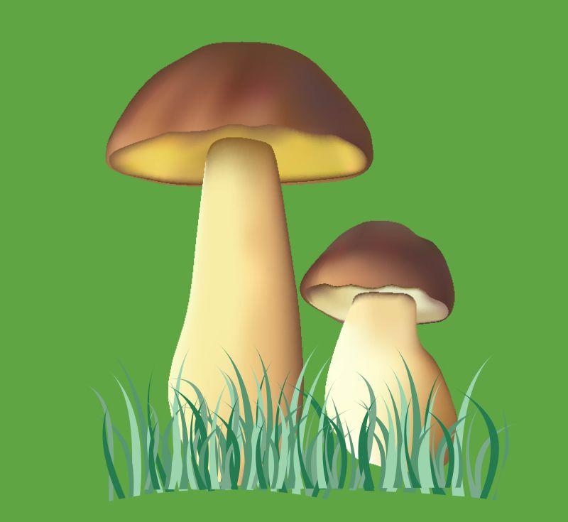 矢量的卡通蘑菇插图设计
