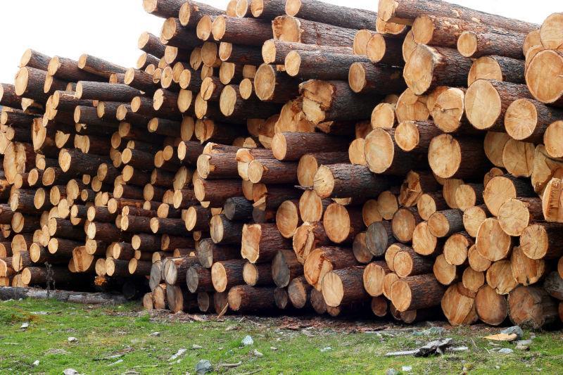 锯慕厂堆砌的木头
