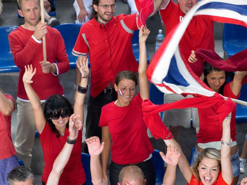 举手欢呼的球迷