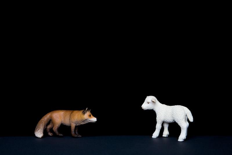 黑色空间里的狐狸和羊羔