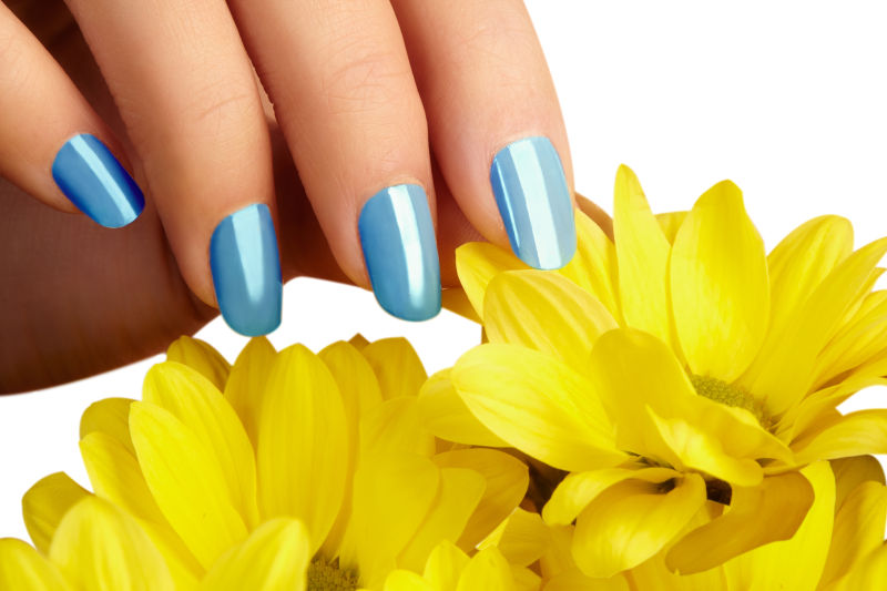 蓝色指甲的女人手抚摸花朵