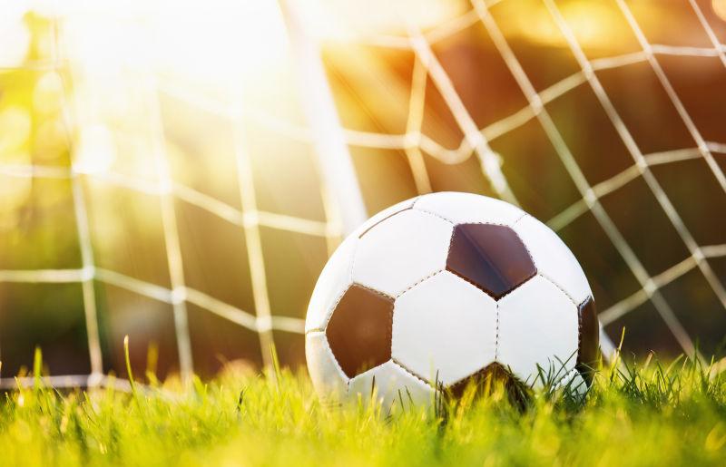 球门中的足球