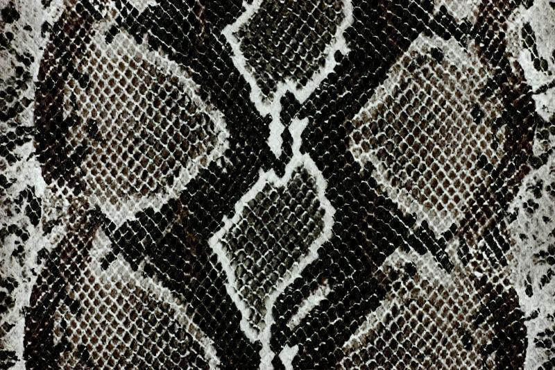 暗色的蛇皮纹理背景
