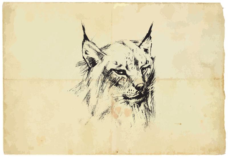 矢量手绘猎豹插图