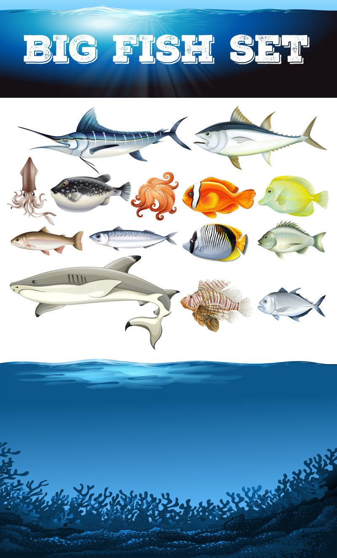 鱼缸背景矢量图_矢量的海洋生物插画图片-卡通海洋生物矢量插画素材-高清图片 ...