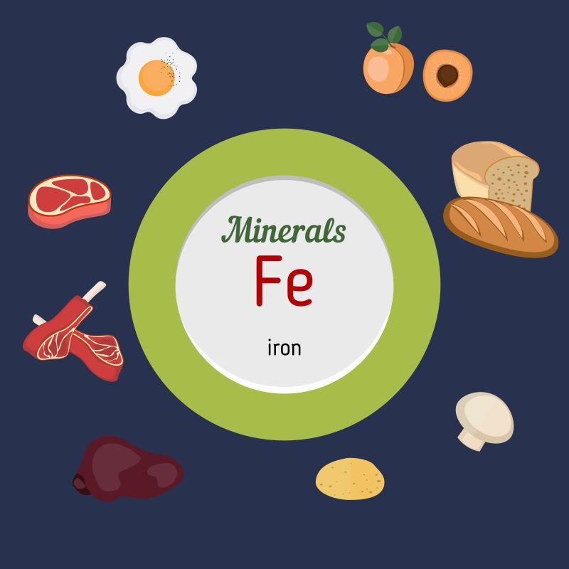铁元素丰富的食物矢量插图