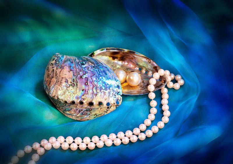珍珠项链耳环和蓝色鲍贝壳