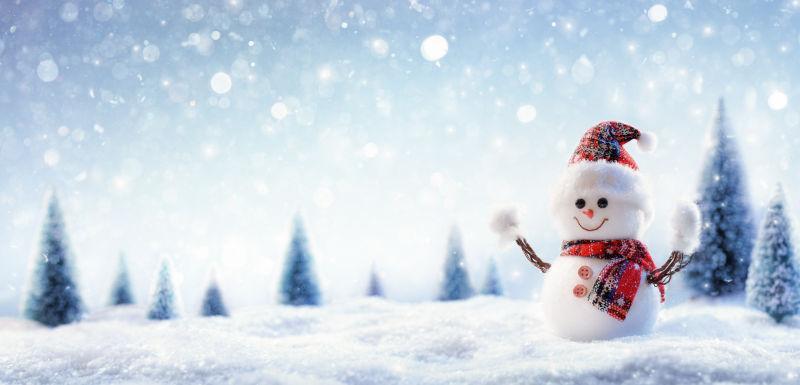 冰雪风景中的雪人