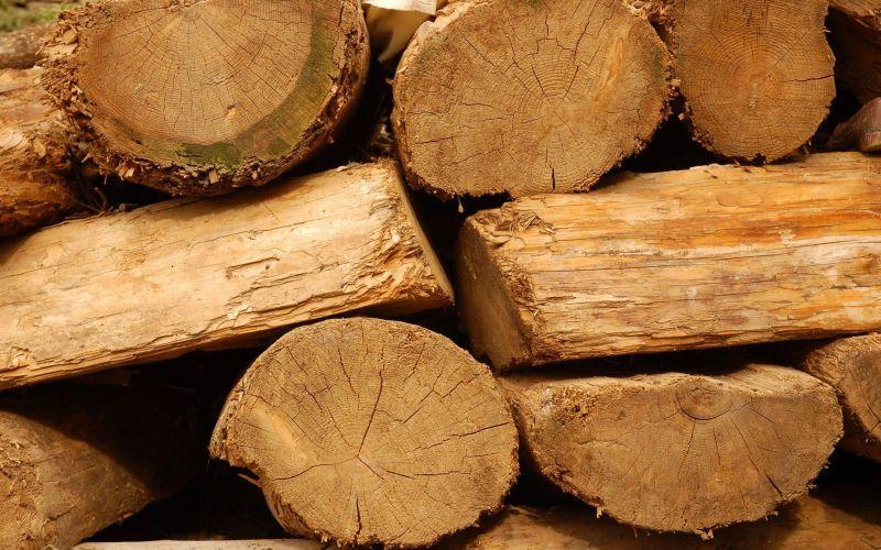堆放的旧木材
