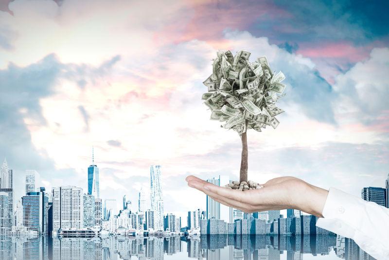城市背景下商人手拿一棵很小的美元树