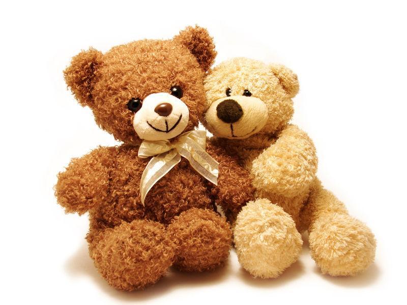 两只泰迪熊坐在一起