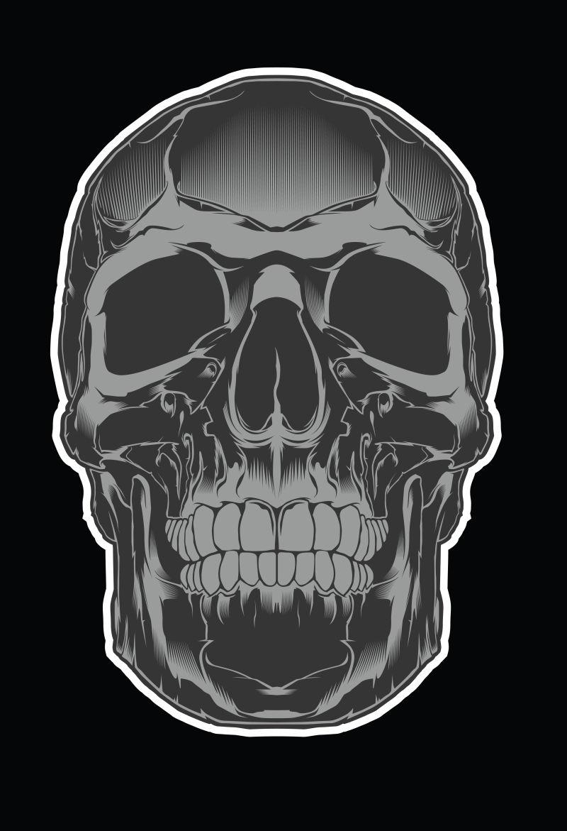 人体颅骨插图矢量设计