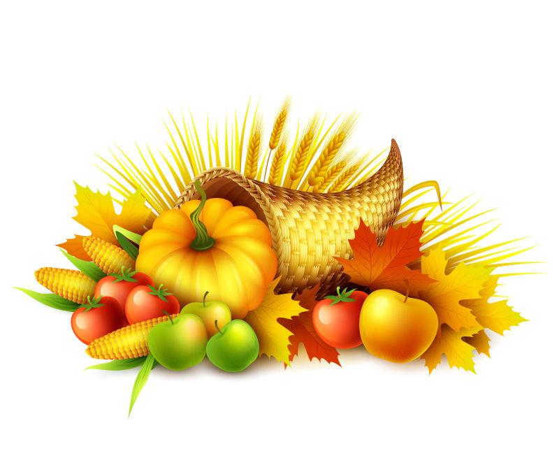 创意矢量丰收蔬果元素的插图