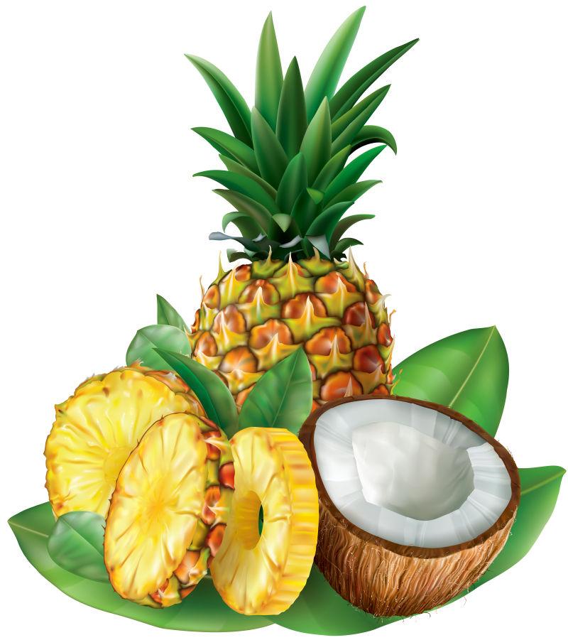 热带水果的矢量创意插图