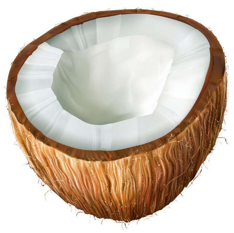 矢量椰子的创意插图