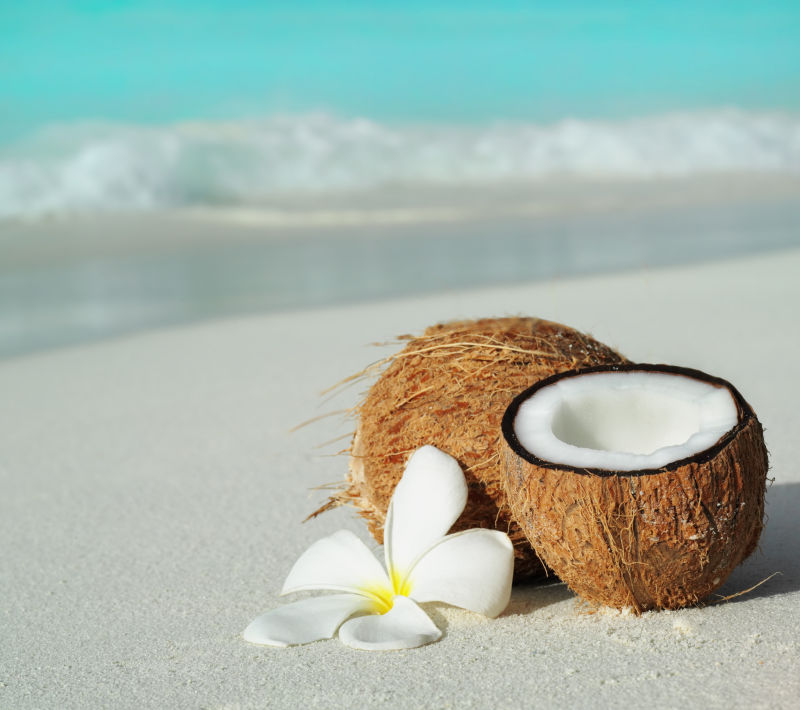 沙滩上的椰子与花朵