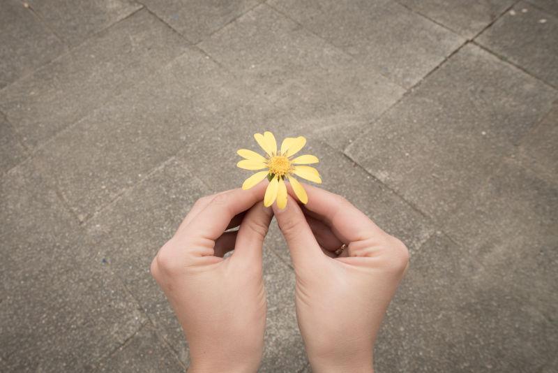 拥有黄色花朵的手