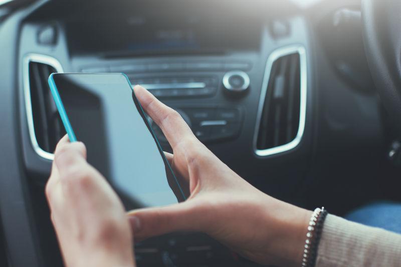 车内的人拿着手机