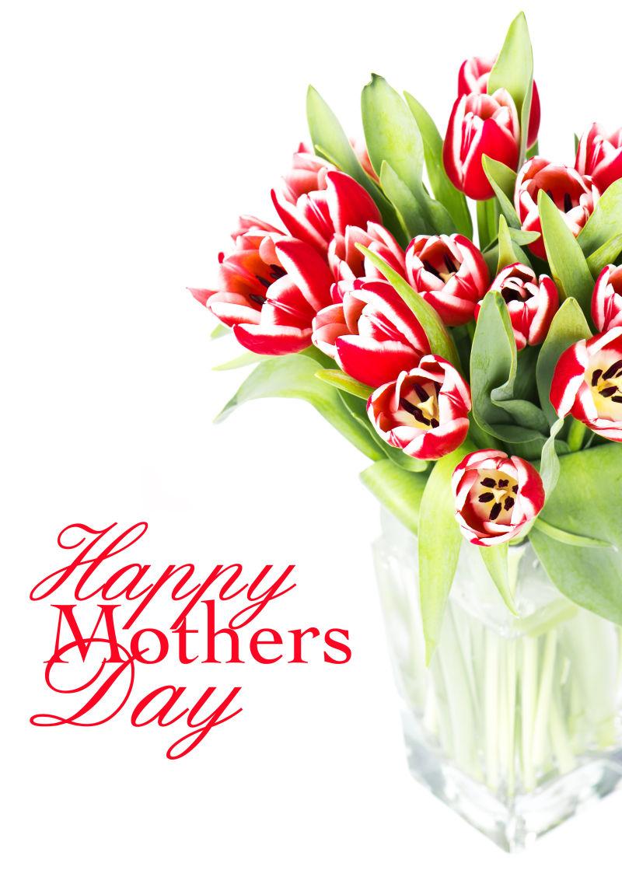 白色背景下的母亲节快乐祝福语和玻璃瓶里的郁金香