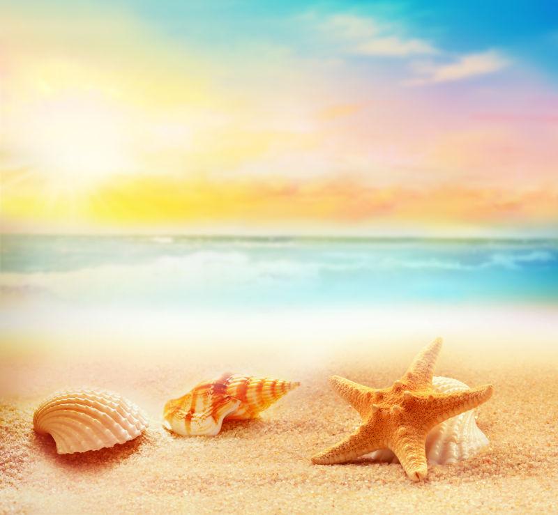 夕阳下的海星