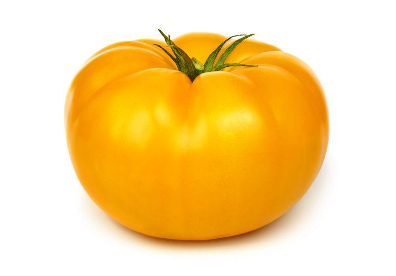 白色背景下美味健康的黄色番茄