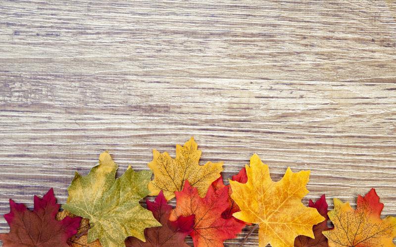 木板上的黄色红色绿色的枫树叶
