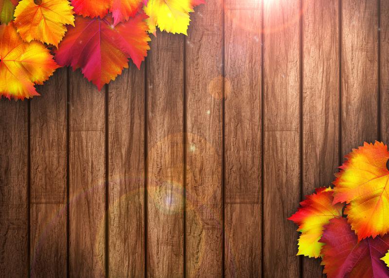 棕色木板上的红色黄色的树叶