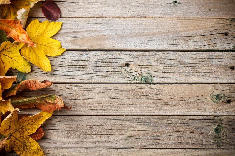 旧木板上的黄色树叶