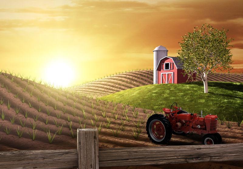 日出的农场