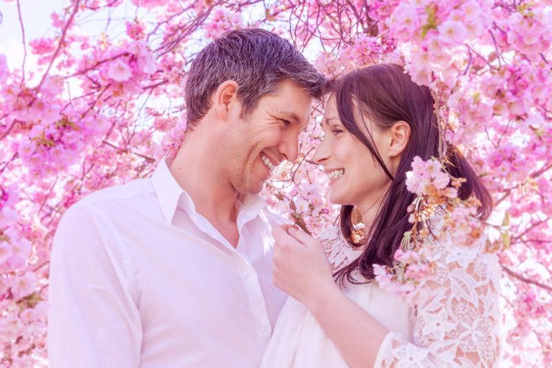 站在粉色花中间的幸福的夫妻