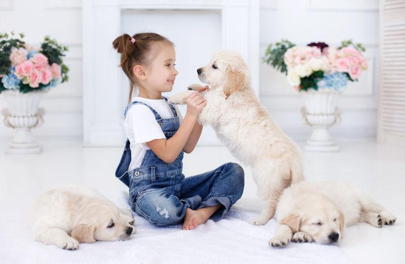 小女孩和她的三只狗狗