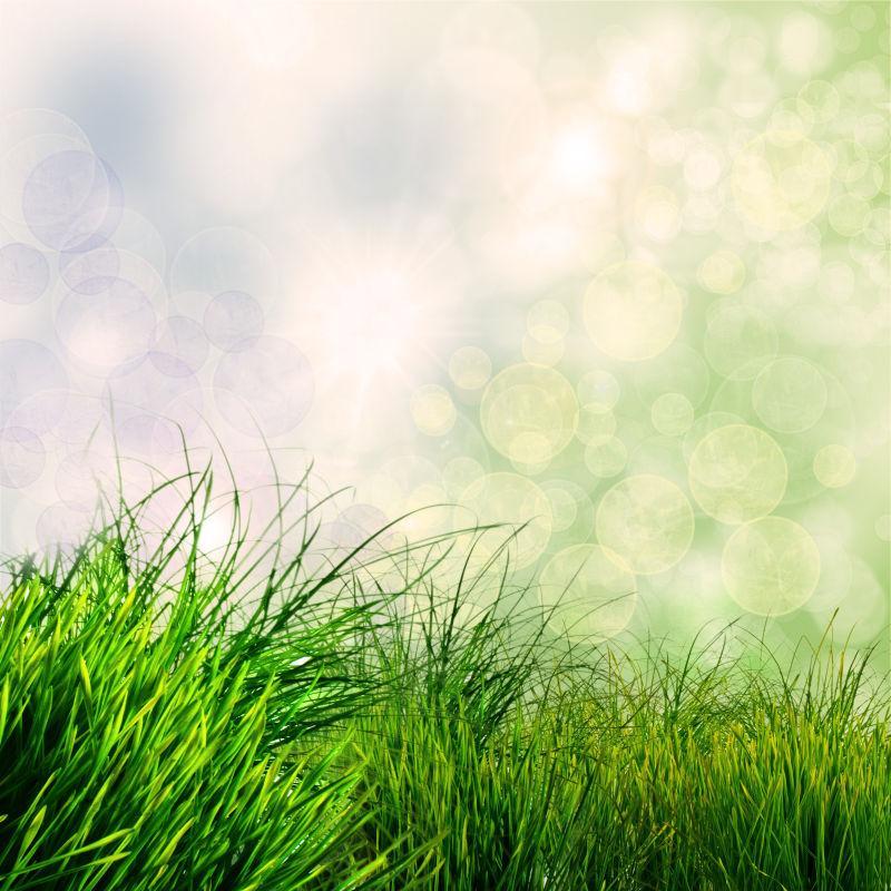 绿色春天草散景